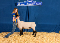MAYES_COUNTY_FAIR_BACKDROP_©KTROYER-7263