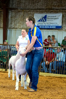 MAYES_COUNTY_FAIR_LAMBS_©KTROYER-7822