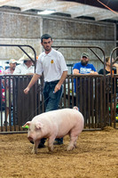 MAYES_COUNTY_FAIR_SWINE_©KTROYER-9440