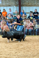 MAYES_COUNTY_FAIR_SWINE_©KTROYER-9568