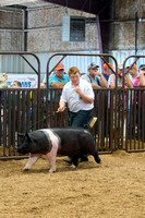 MAYES_COUNTY_FAIR_SWINE_©KTROYER-9576