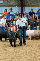 MAYES_COUNTY_FAIR_SWINE_©KTROYER-9728