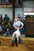 MAYES_COUNTY_FAIR_LAMBS_©KTROYER-7708