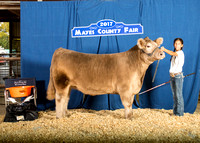 MAYES_COUNTY_FAIR_BEEF_KTROYER-8358