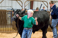 MAYES_COUNTY_FAIR_BEEF_©KTROYER-8697