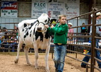 MAYES_COUNTY_FAIR_PREMIUM_SALE_©KTROYER-84