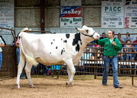 MAYES_COUNTY_FAIR_PREMIUM_SALE_©KTROYER-16