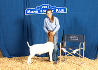 MAYES_COUNTY_FAIR_BACKDROP_KTROYER-7478