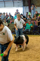 MAYES_COUNTY_FAIR_SWINE_©KTROYER-9557
