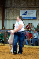 MAYES_COUNTY_FAIR_LAMBS_©KTROYER-7823