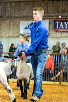 MAYES_COUNTY_FAIR_LAMBS_©KTROYER-7877
